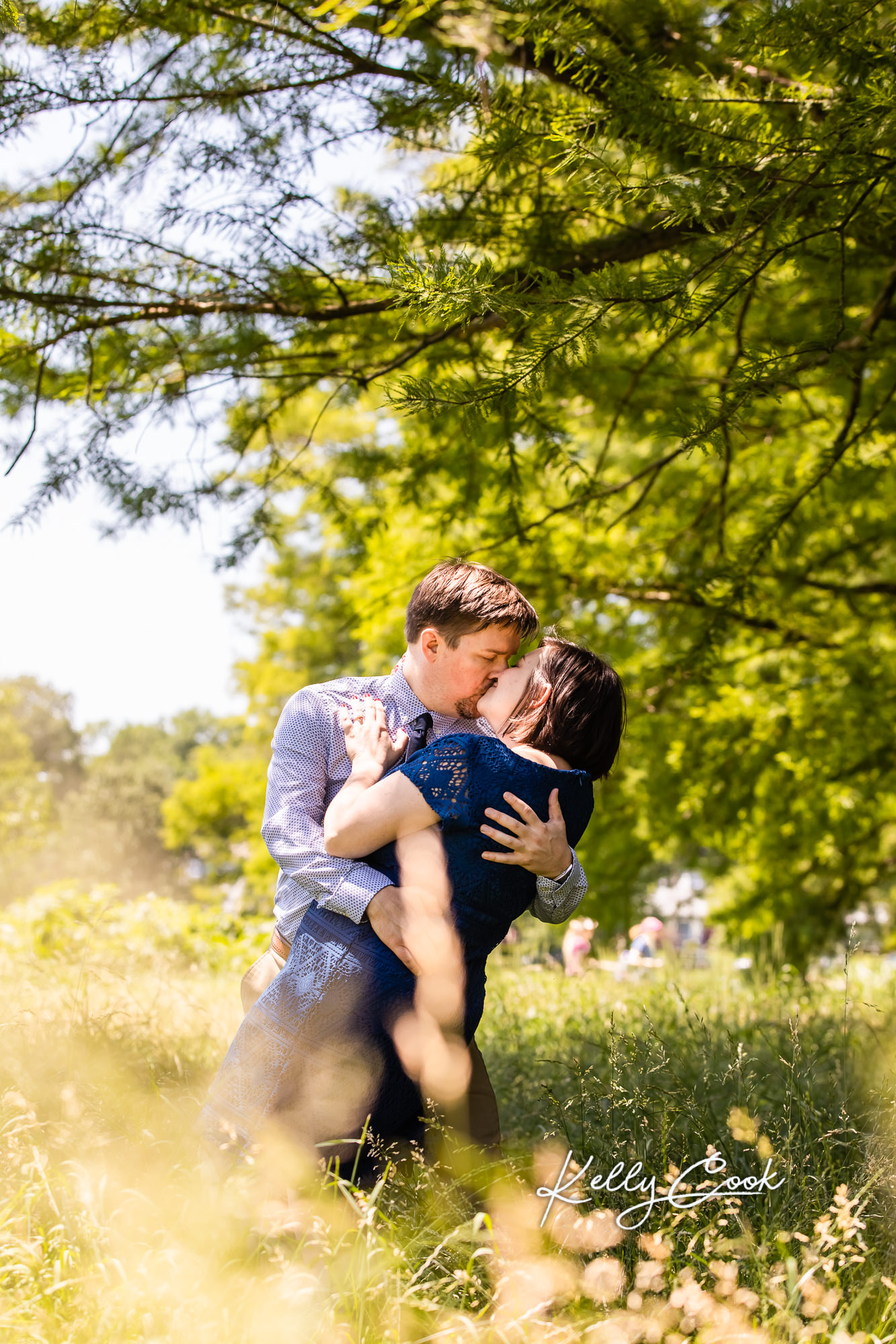 Dreamy St. Louis Engagement photo of an engaged couple in a field in Francis Park