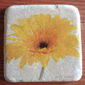 Yellow Gerber on white Coaster
