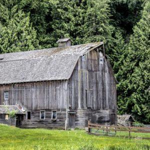 Carman Barn spring by Kelly Cushing