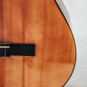 Bottom of an Acoustic Guitar on Canvas by Kelly Cushing