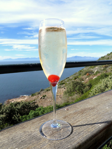 Sparkling Wine with a View