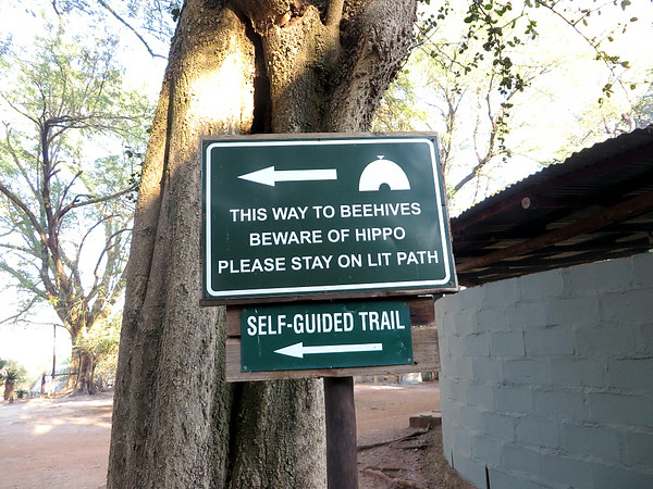 Beware of Hippo