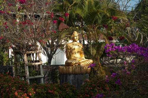 Buddha in a temple garden