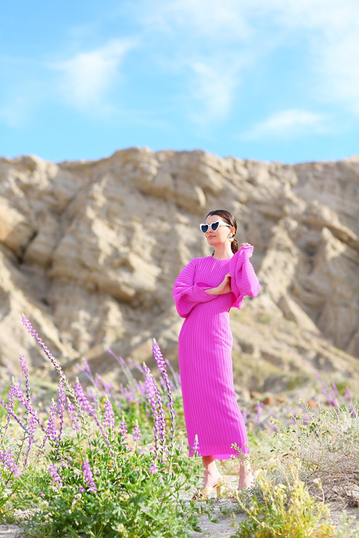 Solace London Dress in Anza-Borrego for the Super Bloom | Kelly Golightly