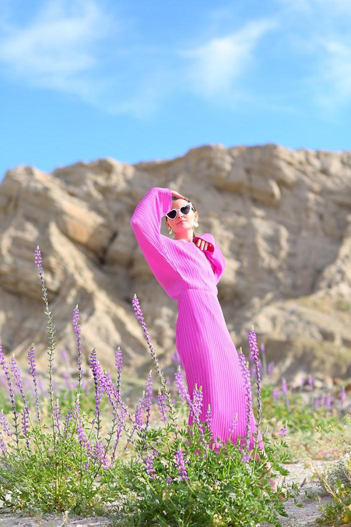 California Super Bloom | Kelly Golightly