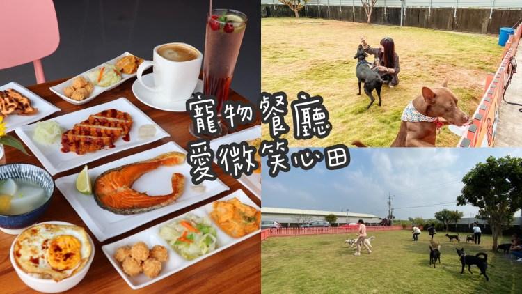 台南新開幕寵物餐廳「愛微笑心田 寵物友善餐廳」戶外大草皮超棒的!餐點有鍋物/套餐/炸物/咖啡飲品!