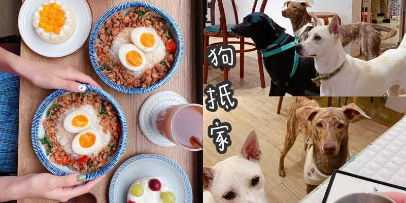 台南浪浪中途咖啡廳『狗抵家』搬家新店面空間更大了,結合汪事屋共享空間有玩又有吃!