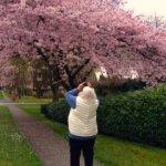 Still Blossoming at 91