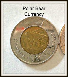 polar bear toonie