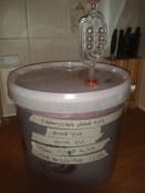Elderberry apple wine fermenting bucket airlock