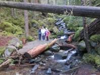 buck-creek-23