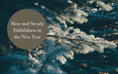 Slow and Steady Faithfulness in the New Year