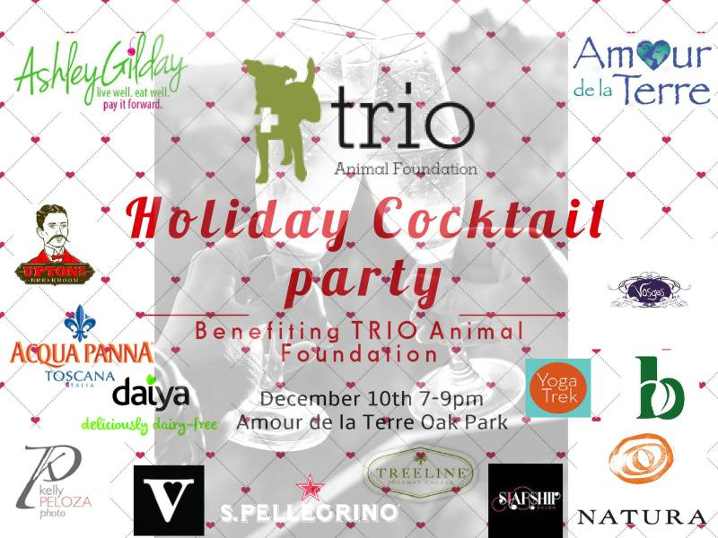 trio-holiday-cocktail-party