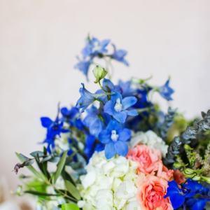 Chicago Wedding Photographer - Kelly Peloza Photo