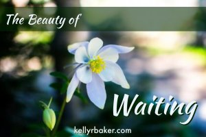 The Beauty of Waiting | Often we look at a period of waiting as a time to only be patient, when we could dig a little deeper into how God intends the season to be a wonderful encouragement to us.