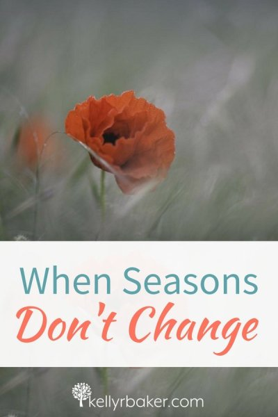 Are you in a long season of life? If we could peel back the curtain and see the long season we are in through God's eyes, we would understand the tarrying has a purpose. #waiting #spiritualgrowth #bibilicaltruths #thrive #seasons #seasonsdontchange #weary #seasonsoflife #seasonsoflifefaith #thrivinginchrist #god #inspiration #encouragement #parenting #motherhood #kids