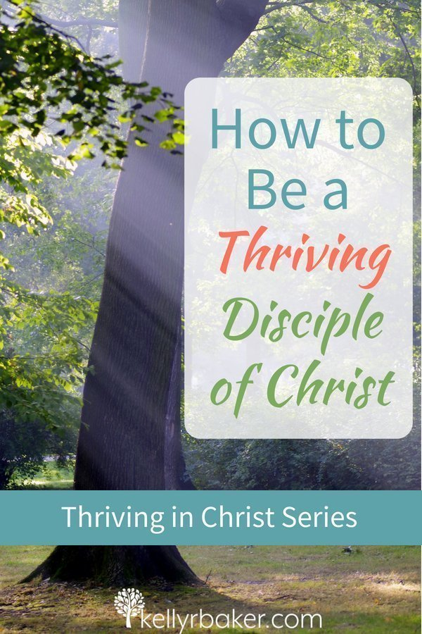 "When we break down the truth of Psalm 1:1-3, we can learn how to be a thriving disciple of Christ. Where are you on the ""does and doesn't do"" chart? #thrive #spiritualgrowth #bibilicaltruths #meditation #thrivinginchrist #fruitofthespirit #thoughts #lifestyle #life #disciple #discipleship #Scriptures #psalms #chrisitian"
