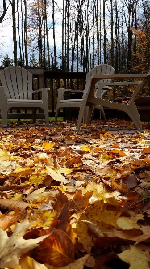 fall-at-home