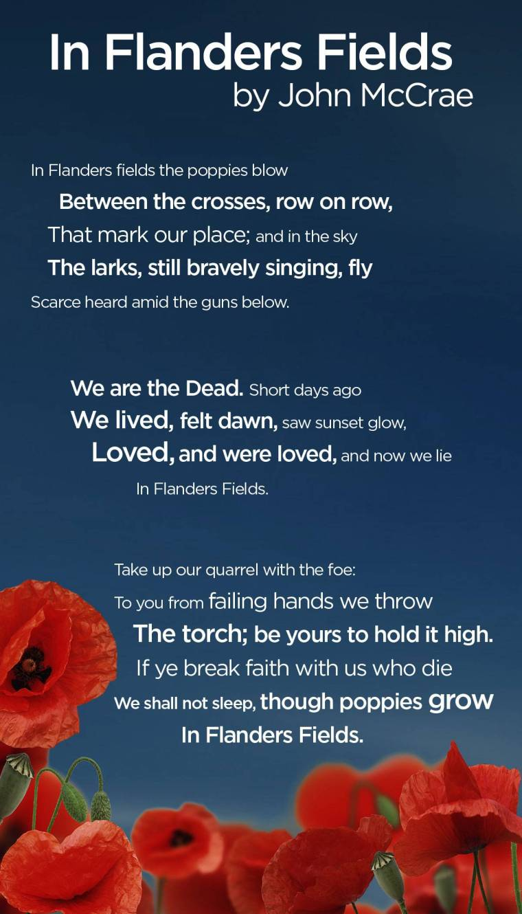 flanders-fields-infographic