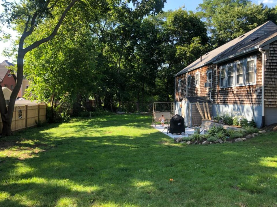 backyard after pic; green lawn