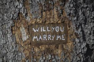 will you marry me - 91741990