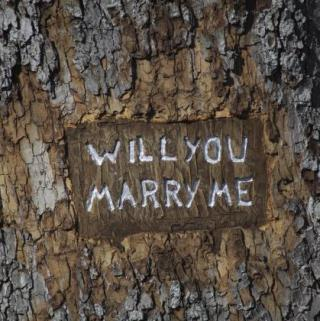 Guide To The Perfect Marriage Proposal