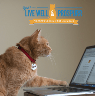 Live Well & Prospurr with Morris the Cat