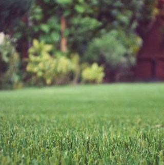 Where Do You Stand On Artificial Lawns?