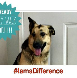 What A Difference A Month Can Do~ #IamsDifference