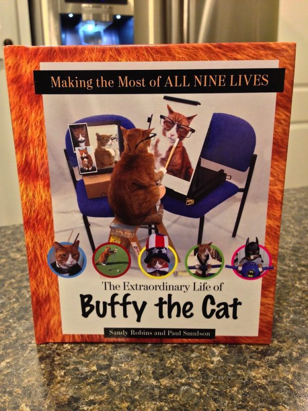 A Book For Cat Lovers - Making The Most Of All Nine Lives by Sandy Robins and Paul Smulson