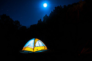 Camping Essentials You Never Knew You'd Need