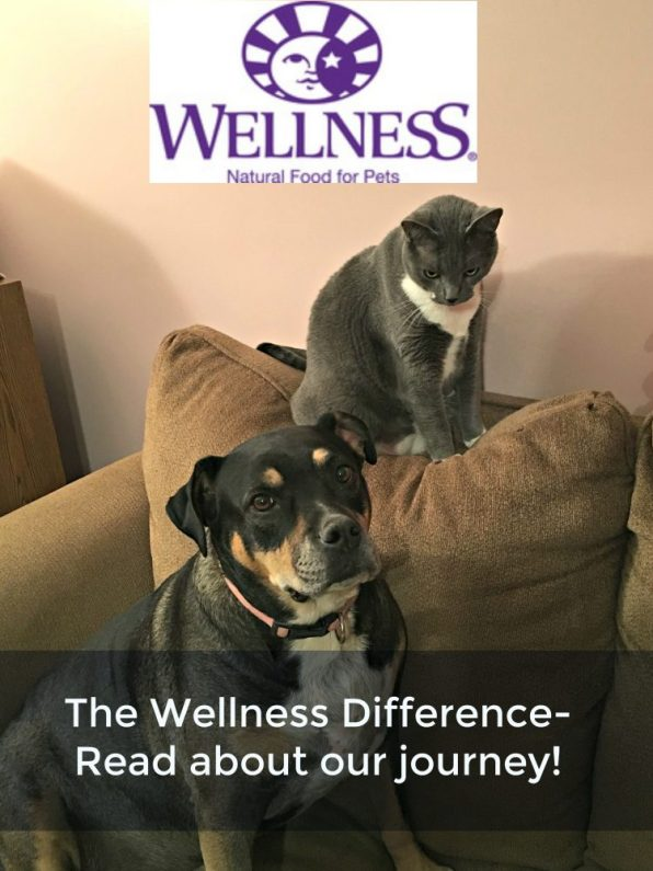 The Wellness Difference For Our Happy Dog Lady #WellnessPet