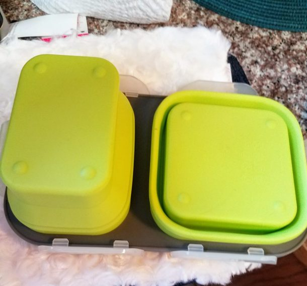 Step Up Your Back to School Lunch Packing Skills D'eco Lunch Box