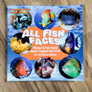 The Perfect Gift for the Little Fishes on Your List