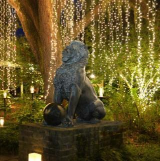 Event-Filled Christmas Season On-Tap Along South Carolina's Hammock Coast