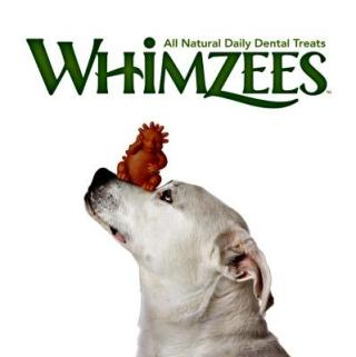 Take Dental Care For Your Pups To New Heights