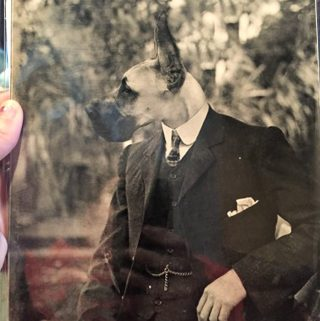 Uncomfortable, Weird Photos for the Hard to Buy For – Antique Pet Photos