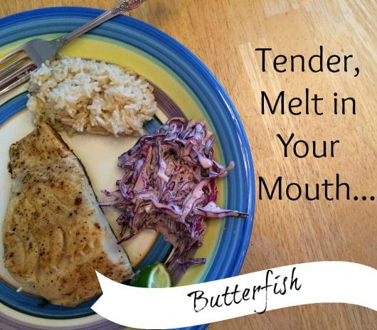 tender fish butterfish