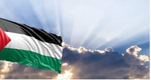 احصائيات فيروس كورونا في فلسطين