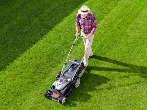 Find the best lawnmower at Kelowna Home Hardware.
