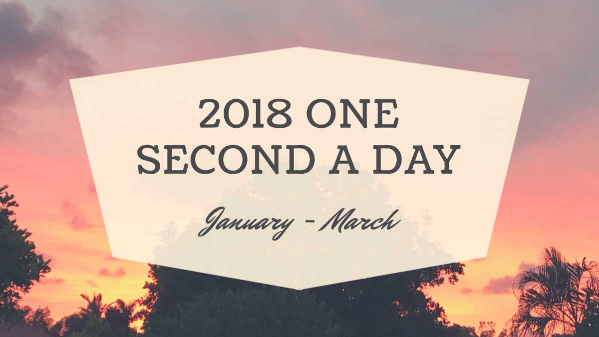 Banner image of one second every day video
