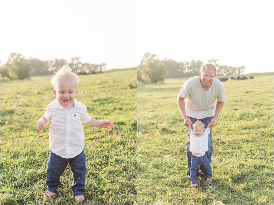 cow farm family session
