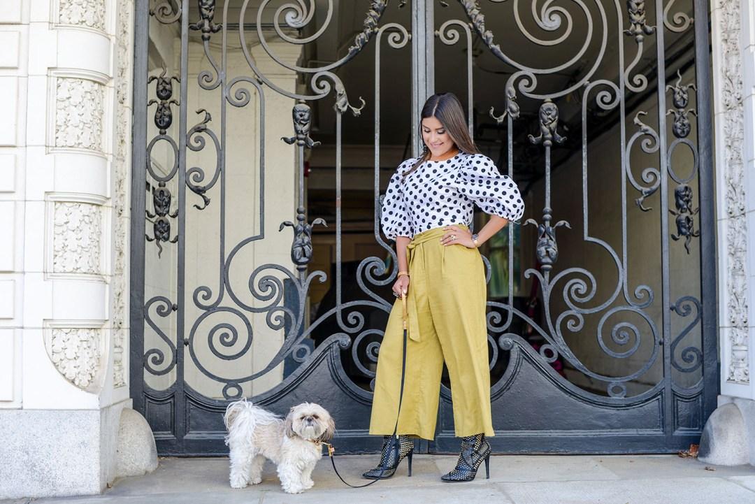 Lifestyle blogger Kelsey Kaplan of Kelsey Kaplan Fashion wearing gold Friendshipcollar and matching leash