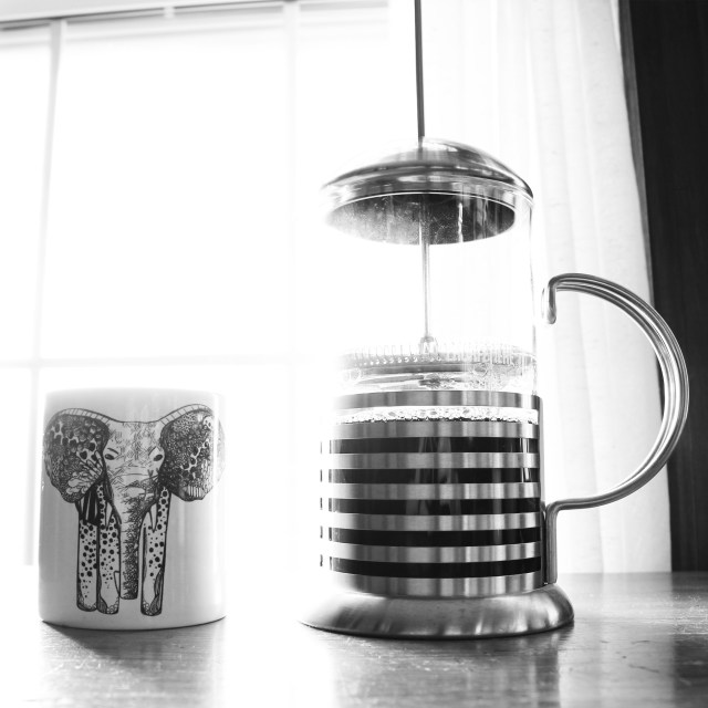 Elephant cup by Kelsey Montague Art