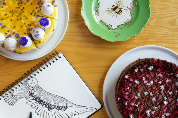 Little Bird Organic Cakes and Kelsey Montague Art with owl