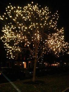 dt lights 1