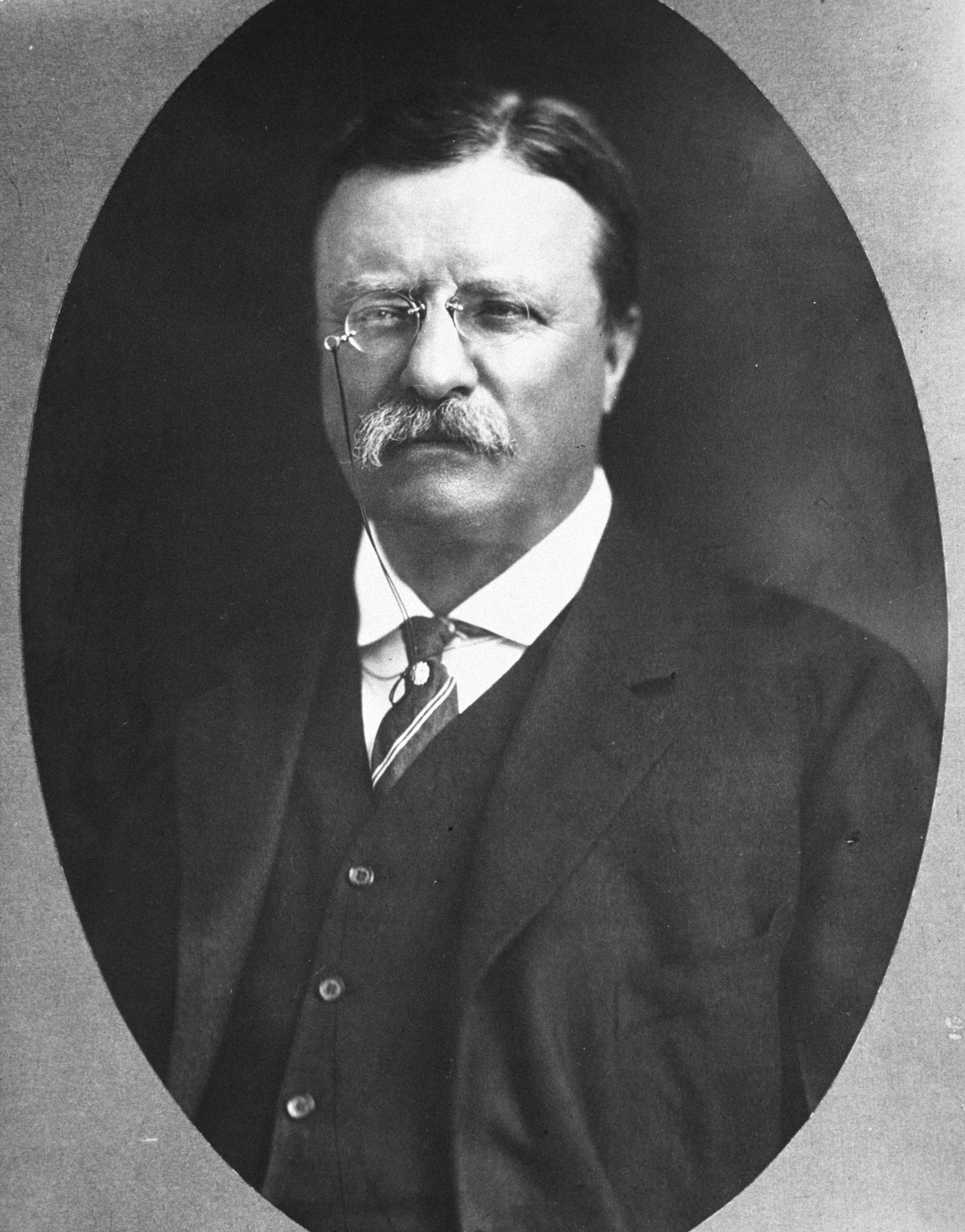 Quote Of The Week 29 July Theodore Roosevelt