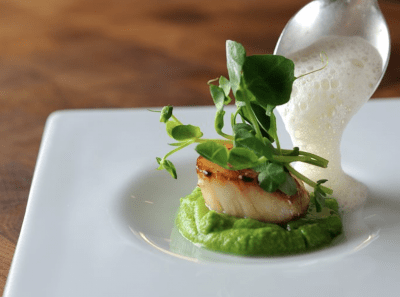 Scallop with pea puree starter