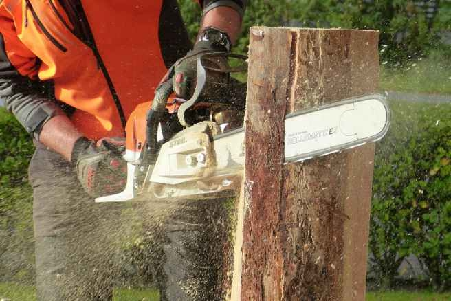 man cutting tress using chainsaw