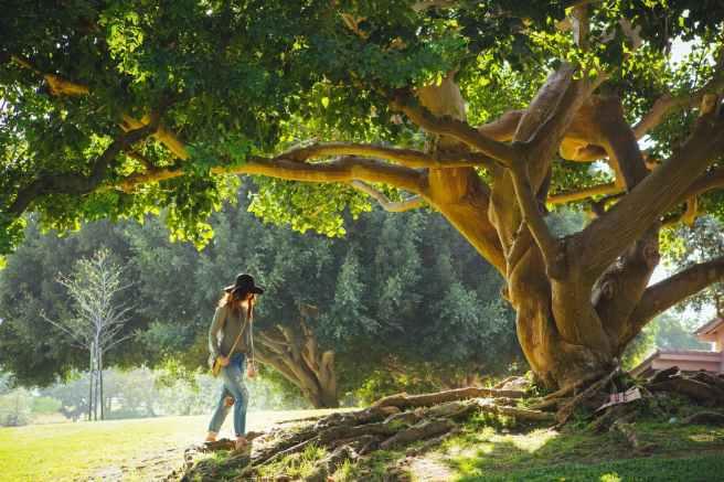 woman walking under green tree